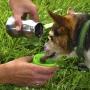 H2O4K9 Láhev na vodu pro psa 0.3L - Zelený