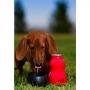 Láhev na vodu pro psa H2O K9 0.3L - Stříbro