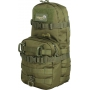 Batoh Viper Tactical One Day Modular Pack / 13.5L / 19x20x43cm Green